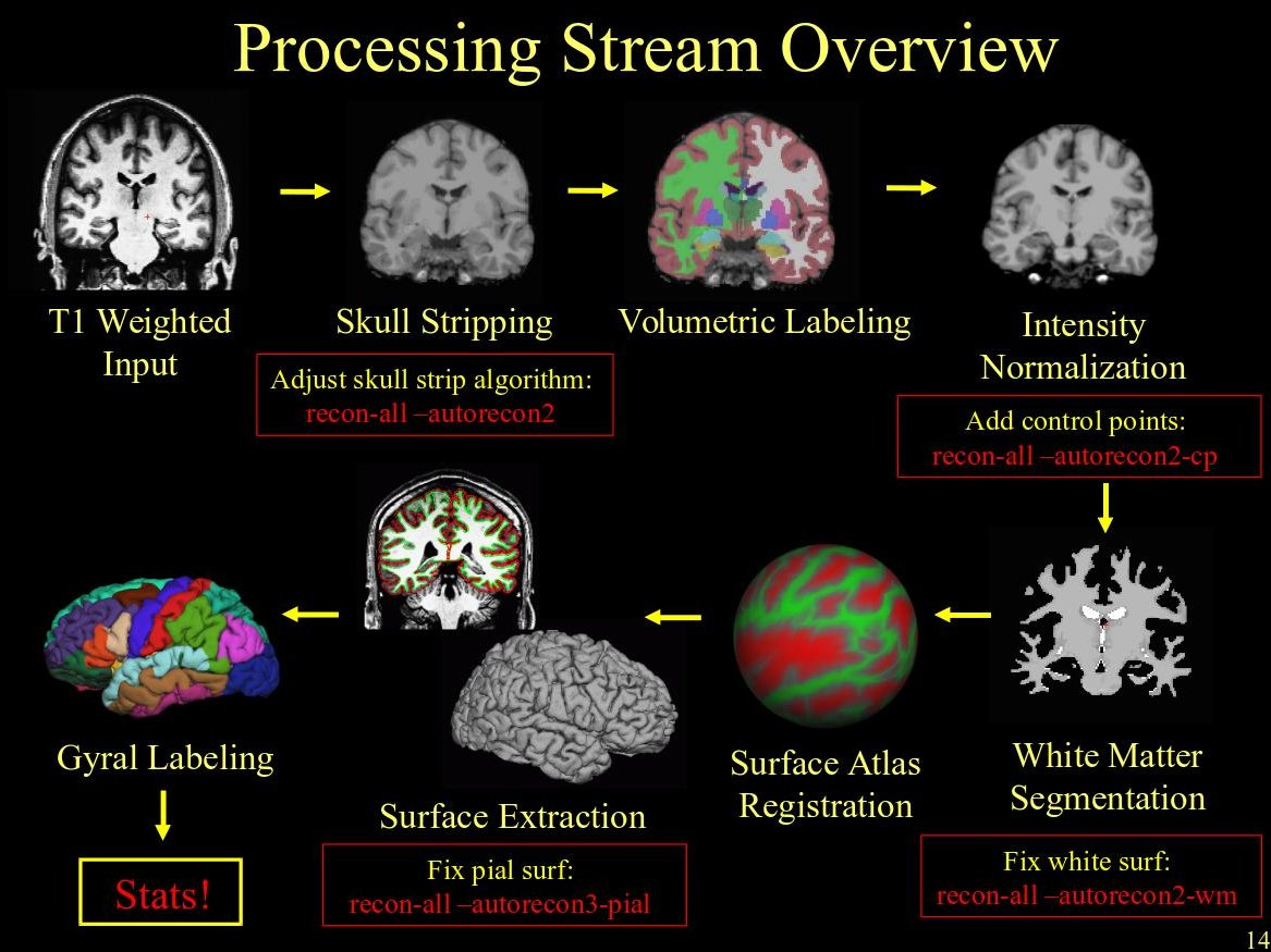processingstream.jpeg